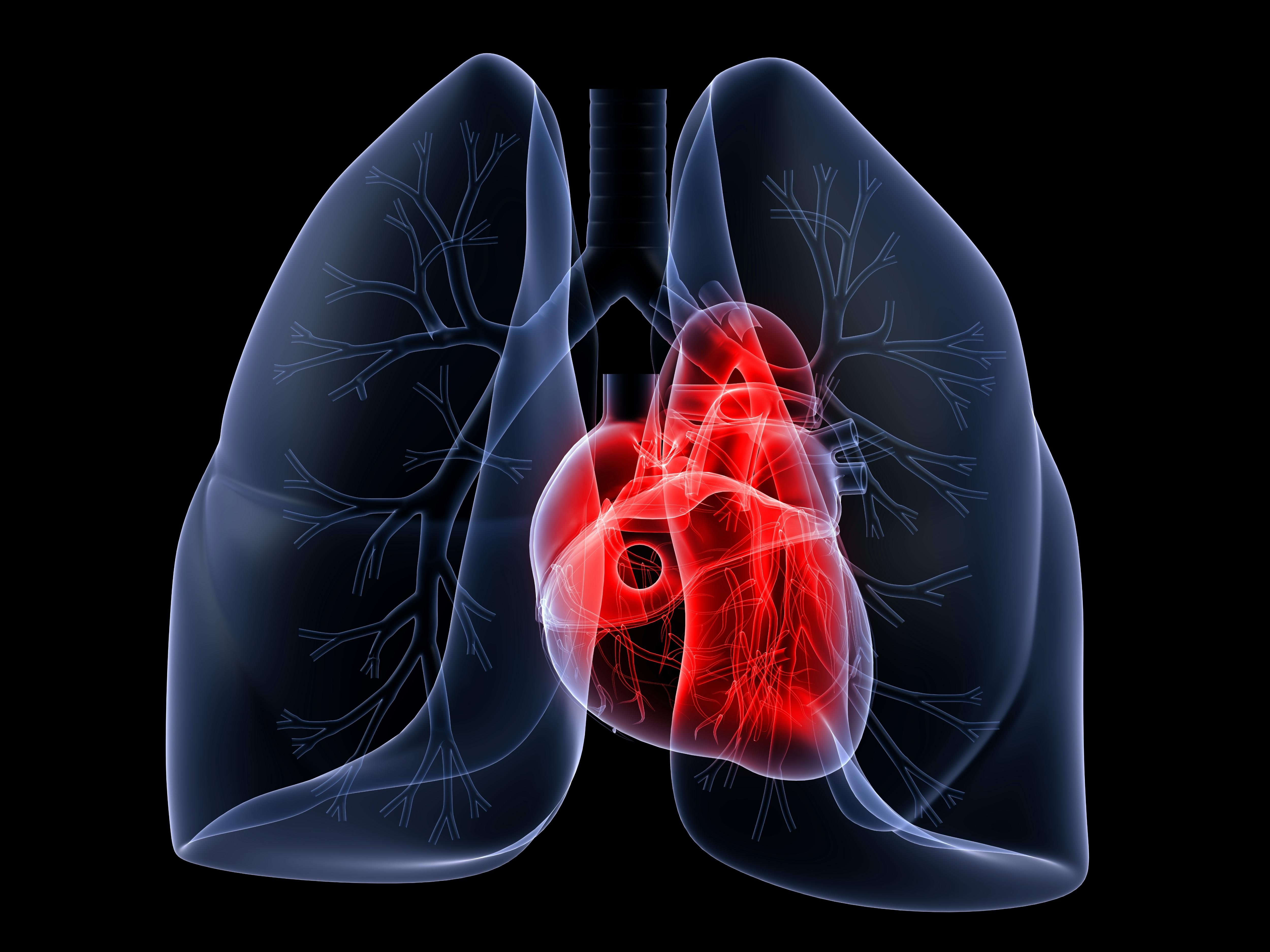 Geïntegreerde hartlongzorg: trendsettend