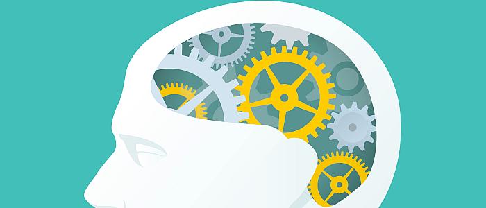 Steeds meer inzicht in hersenen en hersenziektes