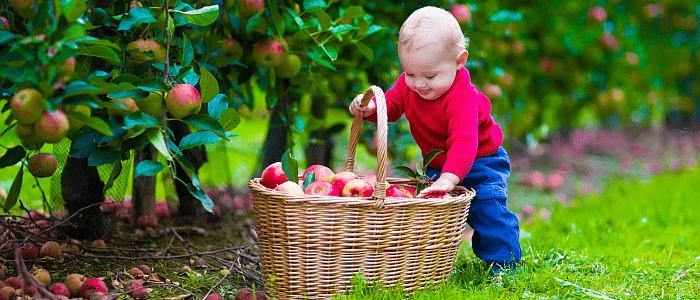 Het belang van goede voeding in de eerste 1000 dagen