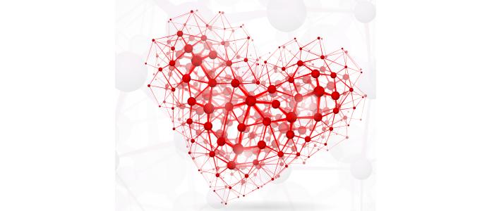 Studie onthult nieuwe genen voor hartwerking