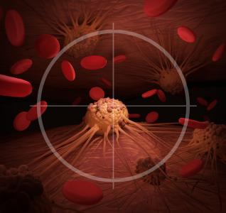 Biomarker ontdekt voor hersen- en ruggenmergontsteking