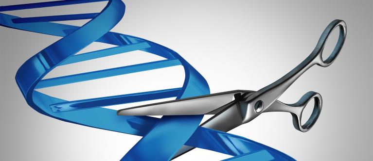 Genetische therapie Usher syndroom stap dichterbij