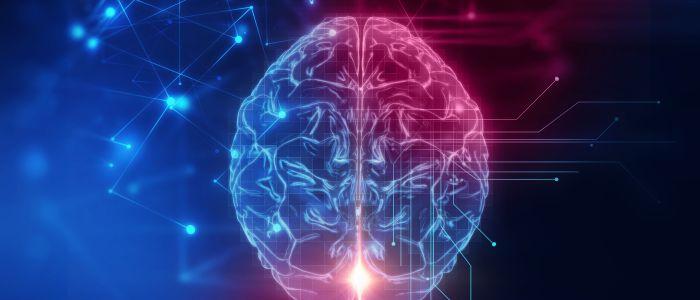 Het brein in tweeën, maar bewustzijn niet