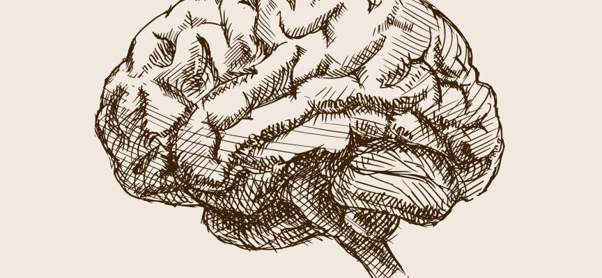 Bij dwangstoornis werken hersenen harder, maar presteren minder
