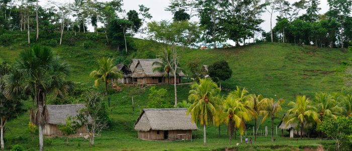 Boliviaanse stam heeft meest gezonde hart