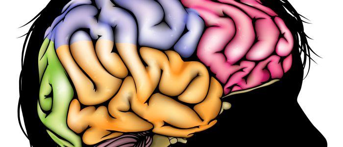 Hersenen bewaren emotionele gebeurtenissen op speciale manier
