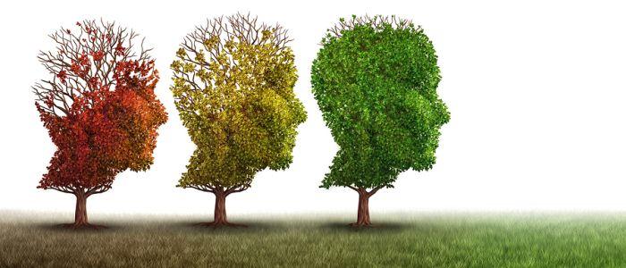Vragenlijsten zinvol bij diagnose gedragsvariant frontotemporale dementie