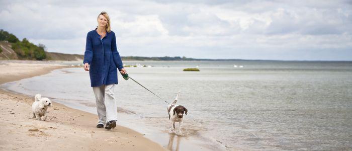 Wandelen met de hond maakt gelukkig