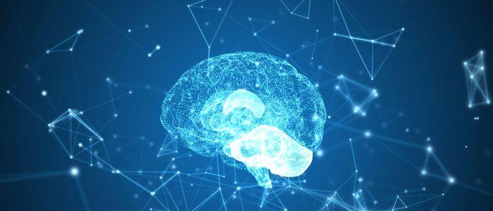 Oorsprong merendeel epilepsiegevallen verklaard