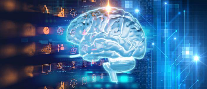 Dunnere hersenschors bij kinderen en volwassenen met dwangstoornis