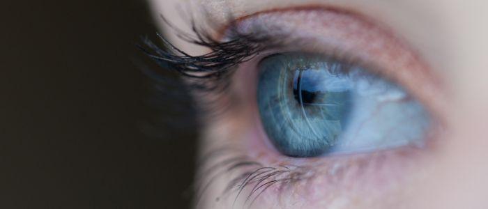 buitenkant-oog