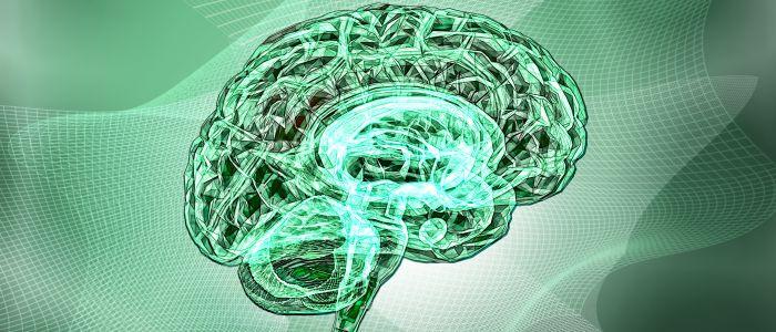Mannen en vrouwen hebben verschillende hersenritmes