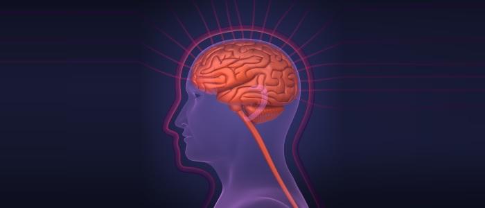 Brein reageert op geuren ondanks aangetast reukvermogen