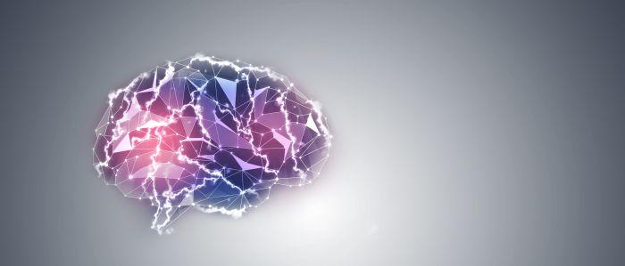 Hersencellen kweken voor personalized medicine