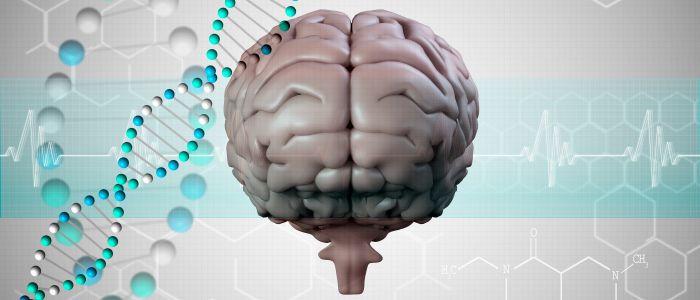 Psychiatrische aandoeningen delen vaak genetische basis