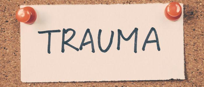 Therapeutrotatie kan effectief zijn bij traumaverwerking
