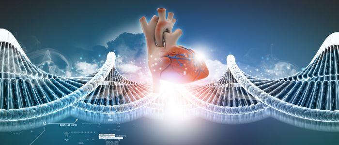50 dna-regio's ontdekt van invloed op hartziekten