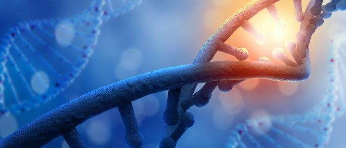 Verhoogd kankerrisico bij lynch-syndroom door PSM2-mutatie