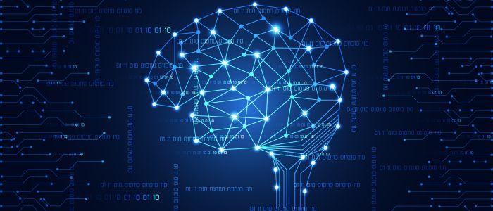 Breinatlas toont verborgen immuuncellen mogelijk gelinkt aan hersenkwalen